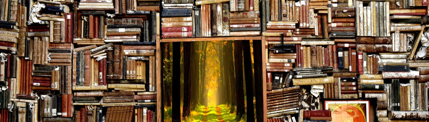La Bibliothèque - Imagin'encre - crédits Pixabay