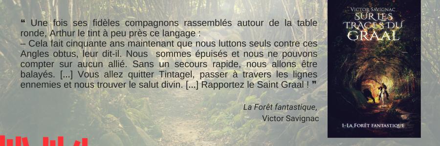 La Forêt fantastique _ Savignac _ Chronique Imagin'encre
